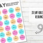 30 Day Bible Promises Reading Plan